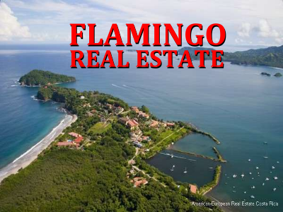 Flamingo beach real estate for sale