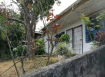 Great Guadalupe investment property for sale in Ipis